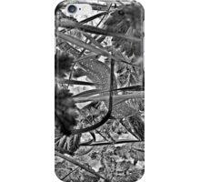 Lill` lizard in tall grass iPhone Case/Skin