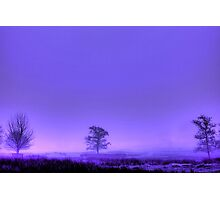 Magenta Dawn Photographic Print