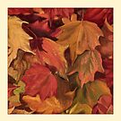Autumn leaves by Victoria  _Ts