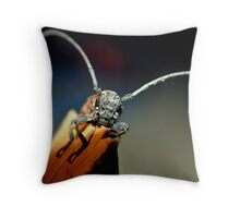 Lil' Bug Throw Pillow