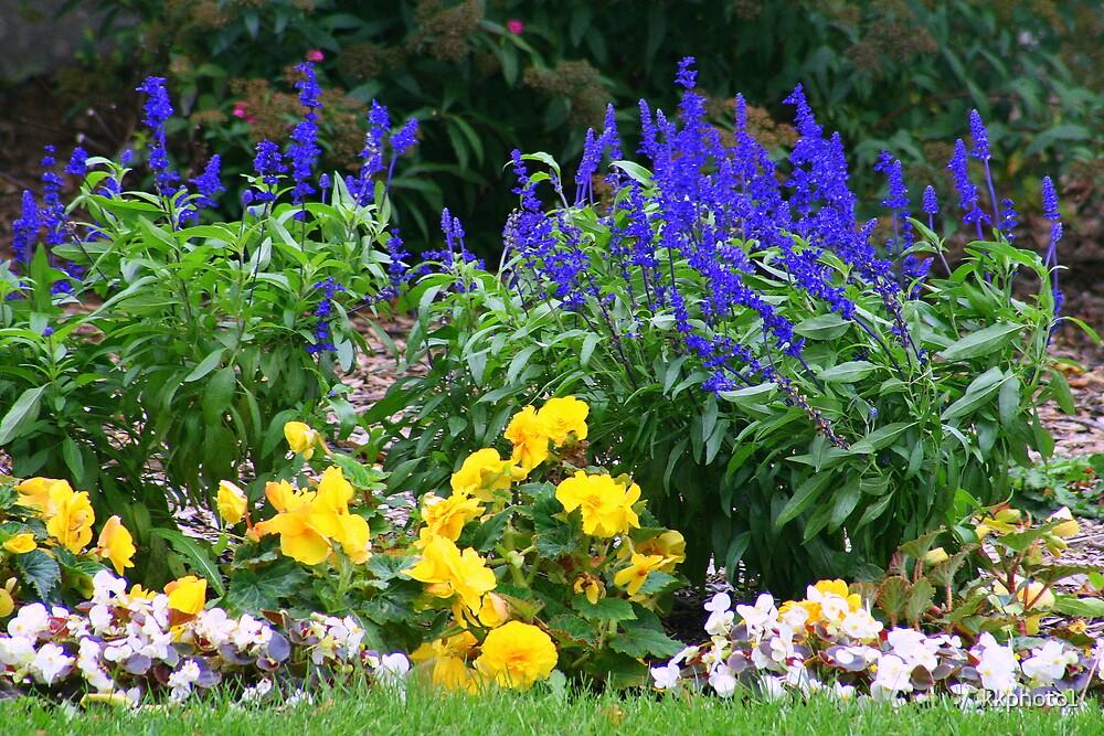 Bandshell Flowers by kkphoto1