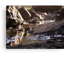 Snoqualmie Falls puddles around the falls Canvas Print