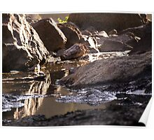 Snoqualmie Falls puddles around the falls Poster
