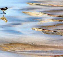 Marine Birdie by Haydee  Yordan