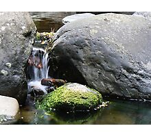 Meeting of the Waters-Mooloolah River Photographic Print