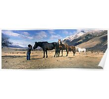 Station horses 2 Poster