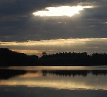 sunrise  by Carol Knepp
