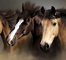 Equine Dreams Horse Portrait by Oldetimemercan