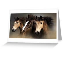 Equine Dreams Horse Portrait Greeting Card