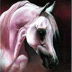 Arabian Horse Portrait by Oldetimemercan