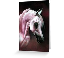 Arabian Horse Portrait Greeting Card
