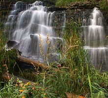 Wild Waterfall by Chintsala