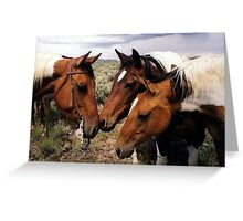Conversation Paint Horse Portrait Greeting Card