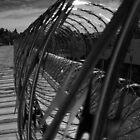 Razor Wire B by enigmatic