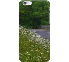 Roadside flowers (Leucanthemum vulgare) iPhone Case/Skin