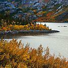 Lake Sabrina Fall by Nolan Nitschke