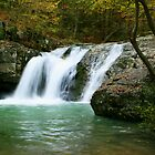 Falls Creek Falls by Lisa G. Putman