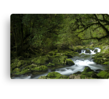 Riwaka River, Tasman bay, New Zealand Canvas Print