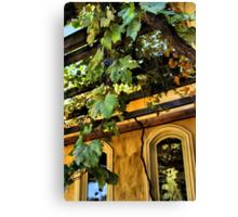 Shenandoah Valley Winery Canvas Print