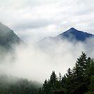 Mt. Terry Fox by Jann Ashworth