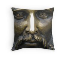 A Very Shiny Nose Throw Pillow