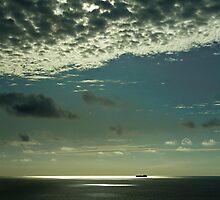 Into the Spotlight by Richard Hamilton-Veal