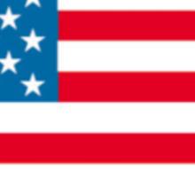 Patriotic Pittie Sticker
