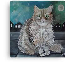 Boris the cat Canvas Print