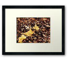 The Hidden Land - The River's Mouth Framed Print