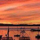 sunset at the bay by jade adams