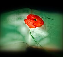 We Will Remember Them by Catherine Hamilton-Veal  ©