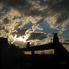 Folded Wings in the Sunset by GemmaWiseman