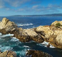 Point Lobos by Bruce Alexander