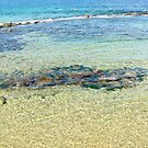 Water and rocks at Newcastle by allabouther
