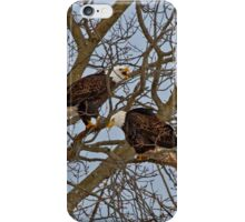 Bald Eagles iPhone Case/Skin