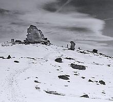 The Sphinx II  by Bogdan Ciocsan