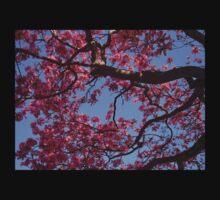 Pink Blossoms, Tabebuia Tree Kids Tee