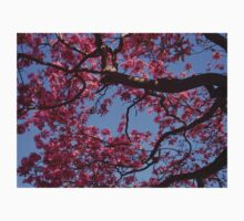 Pink Blossoms, Tabebuia Tree One Piece - Short Sleeve