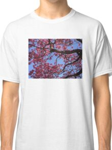 Pink Blossoms, Tabebuia Tree Classic T-Shirt