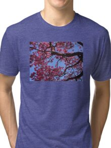 Pink Blossoms, Tabebuia Tree Tri-blend T-Shirt