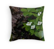 Birch and Dogwood - Lake Superior Provincial Park Throw Pillow