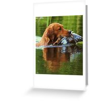 Dog 'n duck Greeting Card