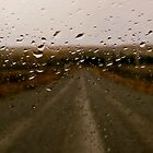 Light Rain on a Country Road by Lee Donavon Hardy