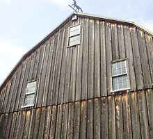 Barn III by paulineca