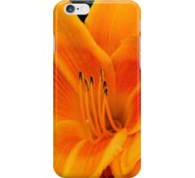 Daylily iPhone Case/Skin