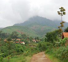 garden by yanyan nurdiansyah