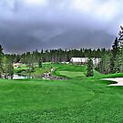 Silver Tip Golf Course Alberta, Canada 2 by Dave Nielsen