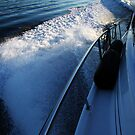 Cruising the Sound by Gary Lee Parker
