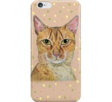 Shy Long haired Abyssinian cat iPhone Case/Skin