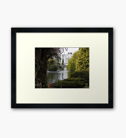 Beautiful View Framed Print